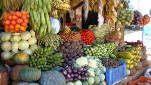 fruit-in-kerala
